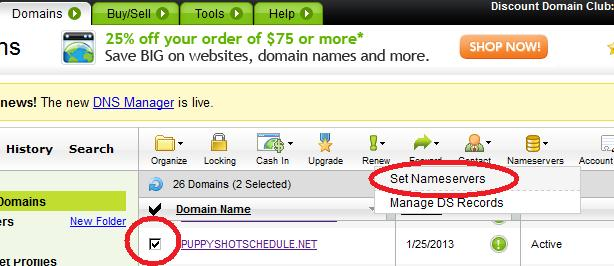 Setting nameservers in your Godaddy account