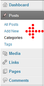 Wordpress post and categories