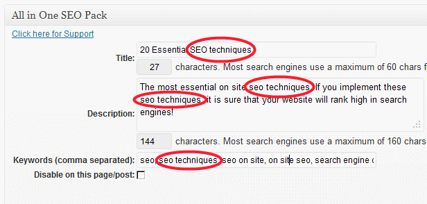 seo techniques configuring all in one seo plugin